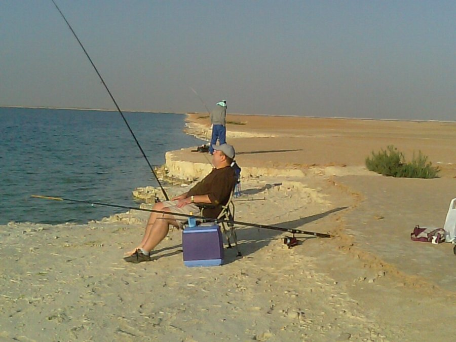 how to catch hamour fish in abu dhabi